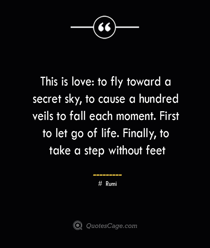 This is love to fly toward a secret sky to cause a hundred veils to fall each moment. First to let go of life. Finally to take a step without feet. ― Rumi