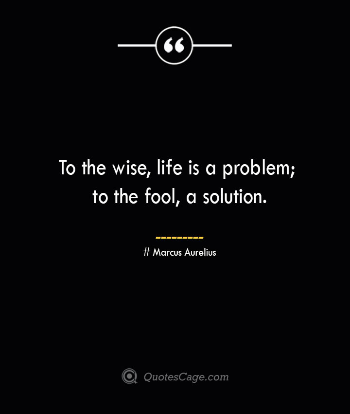 To the wise life is a problem to the fool a solution.— Marcus Aurelius