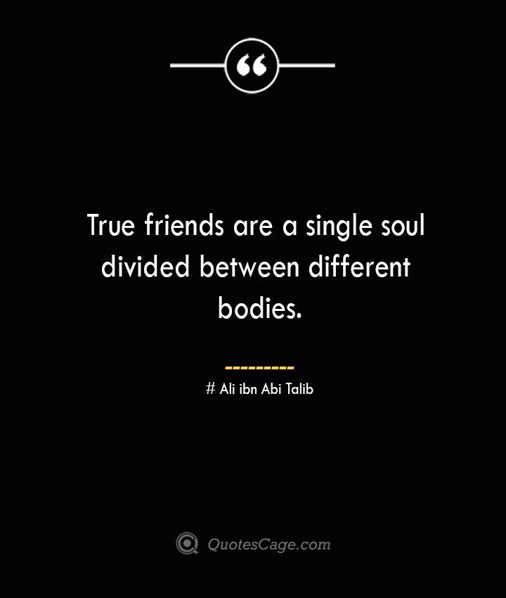True friends are a single soul divided between different bodies.— Ali ibn Abi Talib
