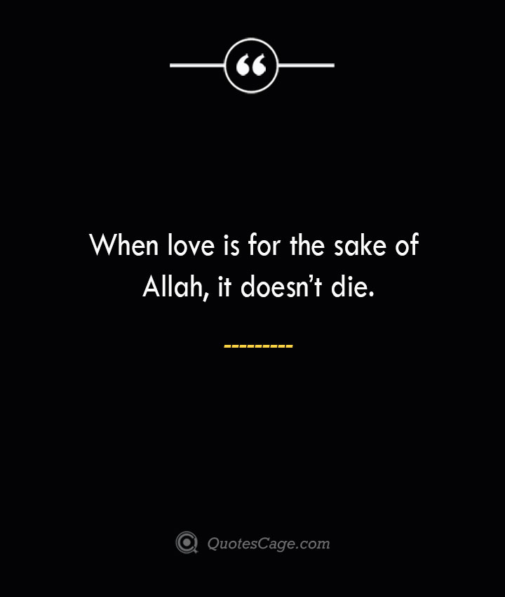 When love is for the sake of Allah it doesnt die. 3