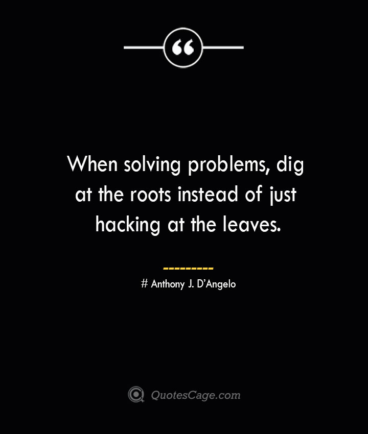 When solving problems dig at the roots instead of just hacking at the leaves.— Anthony J. DAngelo